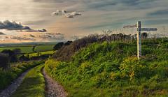 To Kingswear... (Frosty__Seafire) Tags: road light sunset sign golden countryside track farm devon signpost kingswear d7000