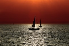 sailing at sunset - Tel-Aviv beach (Lior. L) Tags: sunset sea beach telaviv sailing silhouettes sailboats sailingatsunsettelavivbeach