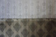 Wallpaper (mydoghasnono.se) Tags: old wallpaper rot abandoned home wall pattern decay decoration urbanexploration fade damp urbex