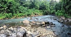 Water is the driver of nature~ Happy weekend.. . . #repost Photo by : @muhammadathooo . . #water #weekend #holiday #waterfall #river #gogreen #savetheeart #serang #padarincang #curugtomo #curug #kotaserang #Banten #Indonesia. . . http://kotaserang.net/1BF (kotaserang) Tags: holiday water by river indonesia happy is photo waterfall weekend driver repost serang gogreen banten curug nature~ padarincang savetheeart kotaserang instagram ifttt httpkotaserangcom muhammadathooo curugtomo