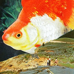 Big fish (Mariano Peccinetti Collage Art) Tags: flowers camp moon fish art collage yoga vintage rainbow 60s arte desert surrealism space dream surreal retro lsd fullmoon nebula collageart 70s surrealist meditation saturn trippy psychedelic cosmic psych cutandpaste dmt globular vintageart collageartist peccinetti collagealinfinito marianopeccinetti