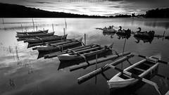 In.Line (Hafiz.Soyuz.Photography) Tags: blackandwhite bali mountain lake tourism water monochrome indonesia boat woods village lagoon tourist attraction ulun danu batur