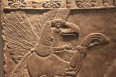 British Museum (Maillekeule) Tags: london museum eagle musee londres british assyrian aigle nimrud ninurta assyrue