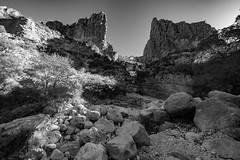 (o texano) Tags: texas westtexas guadalupemountainsnationalpark guadalupemountains devilshall