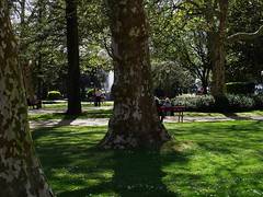 A wonderful Spring afternoon in the park (7th_cloud) Tags: park green portugal grass canon garden spring porto jardim g11 passeioalegre canonpowershotg11
