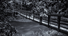 Follow the light (grace.morgan100) Tags: park old bridge trees light summer white black water monochrome leaves river mono evening wooden long exposure little hidden lithuania vilnius belmontas