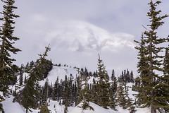 20160109-IMG_2822 (Ken Poore) Tags: snow mountains paradise hiking cascades snowshoeing washingtonstate geolocation mtrainiernationalpark geocity camera:make=canon exif:make=canon geocountry geostate exif:lens=ef24105mmf4lisusm exif:focallength=70mm exif:aperture=ƒ90 exif:model=canoneos6d camera:model=canoneos6d exif:isospeed=100 geo:lat=4678539 geo:lon=12173419