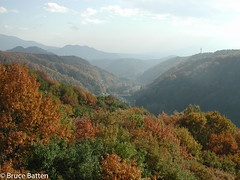 001112 Yatsugatake.jpg (Bruce Batten) Tags: subjects trees locations yamanashi autumncolors plants tokyo japan honshu