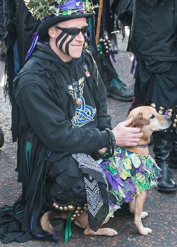 Hemlock morris hound