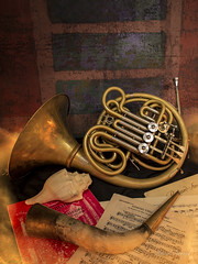 Hornist still life / Bodegn trompstico (Hornisterol) Tags: lightpainting bodegn horn cor febrero corno 2016 trompa manueljrrega