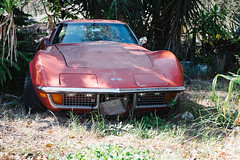 Garden Corvette (Ron Buening) Tags: auto old classic car vintage automobile transport greenhouse transportation hood windshield bonnet