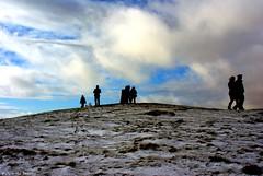 2 (Nicola Dell Photography) Tags: uk winter nature birds garden photography landscapes nicola wildlife derbyshire sheffield dell tor mam walkers castleton 2016 2015 s12 hackenthorpe