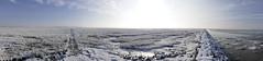 Nordsee- Panorama (Don Bello Photography) Tags: winter frost himmel sonne nordsee gegenlicht 1000views 2016 salzwiesen 2000views acdsee 3000views dnenhof gegenlichtaufnahme bodenfrost steinwall himmelszeichnungen lumixphotographer donbello panasonicphotographer cuxhavenberensch reinhardbellmann panasonicfz1000 lumixfz1000 donbellophotography acdseeultimate9