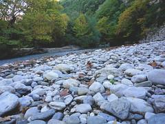 DSC07701 (constrip) Tags: tree stone river steine macedonia fluss griechenland wald