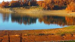 Λιμνη Πλαστηρα P1150501 (omirou56) Tags: 169 ελλαδα λιμνηπλαστηρα φυση φθινοπωρο νερο νοεμβρησ θεσσαλία αντανακλαση reflection greece panasoniclumixdmctz40 water lake nature natur natura november autumn trees 7dwf