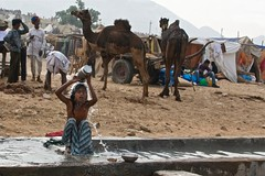 The morning wash (Simon Maddison LRPS) Tags: pushkar rajasthan