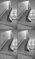 LIMG_7902 (qpkarl) Tags: blackandwhite bw stereoscopic stereogram stereophoto stereophotography 3d stereo stereoview stereograph stereography stereoscope stereoscopy stereographic
