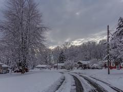 DSC01618-2 (johnjmurphyiii) Tags: winter usa snow connecticut shelly cromwell originaljpeg johnjmurphyiii 06416 sonycybershotdsch90