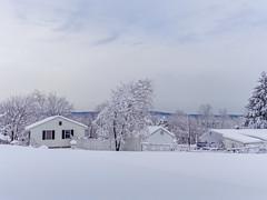 DSC01609-2 (johnjmurphyiii) Tags: winter usa snow connecticut shelly cromwell originaljpeg johnjmurphyiii 06416 sonycybershotdsch90