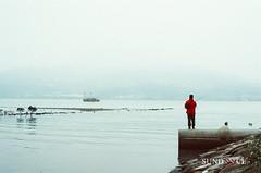 Fishing (Sundance = ) Tags: film river fishing olympus minimal  om1  tamsui  coolblue landscpe    sundancelee  sundanncestudio