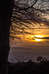Sun Behind The Clouds - Cleeve Hill, Gloucestershire. (Jeremiah Huxley Productions) Tags: england gloucestershire cheltenham cleevehill