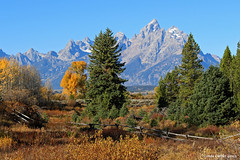 Happy Fence Friday ,  Grand Tetons (Wonder Woman !) Tags: usa mountains fence wyoming grandtetons