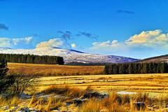 Near Balvraid (Fr Paul Hackett) Tags: winter sun landscape a9