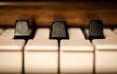 7 of 88 [explored 3-21-16] (zzra) Tags: white black macro closeup keys notes piano mondays inheritance