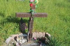 pescadero cemetaries (15) (kenr61) Tags: cemetaries headstones graves pescadero