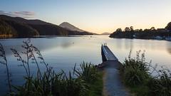 Elaine Bay (loveexploring) Tags: sunset newzealand seascape landscape bay calm wharf southisland serene marlboroughsounds newzealandflax pelorussound elainebay tennysoninlet doccampsite tawhitinuireach