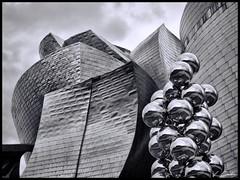 Museo Guggenheim (Bilbao) (Lorena Cabo) Tags: blancoynegro blackwhite bilbao museoguggenheim