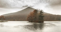 Advent of Spring (popago) Tags: trees mountain lake rain virginia nopeople blueridgeparkway blueridge peaksofotter