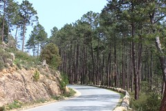 D268 (demeeschter) Tags: trees france mountains nature forest river landscape rocks corse corsica canyon gorge solenzara