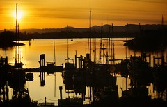 patterns (paddy_bb) Tags: sunset cloud sun seascape canada water marina boat pattern harbour 1993 hafen paddybb