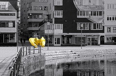 Yellow (Anders Bromell) Tags: gult fotosondag fs160327