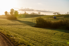 3U4A0321_MartenSvensson (Bad-Duck) Tags: traktor vr morgon amazone motljus newholland maskiner spr jordbruk spruta rstid hstvete omstndigheter