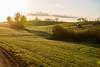 3U4A0321_MartenSvensson (Bad-Duck) Tags: traktor vår morgon amazone motljus newholland maskiner spår jordbruk spruta årstid höstvete omständigheter