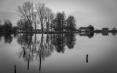 Reflections (gibwheels) Tags: trees houses white black holland water netherlands waterland in broek