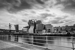 Guggenheim, Bilbao (james smyth) Tags: euskadi guggenheim bilbao basque spain landscape blackandwhite jamessmyth