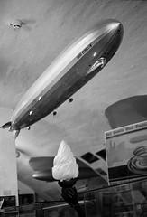 Pen-FT Roll 6 (mkk707) Tags: bw blackwhite 35mmfilm filmcamera bodensee lakeconstance olympuspenft halfformat zuiko38mmf18 teamfilm