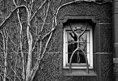 Fancy grating (Scossadream) Tags: roof tower castle geometric church window nature lines river denmark graffiti nyhavn gate lego sweden borg gothic tunnel balticsea spacemonkey sverige christiana shape malm greenhouses kbenhavn littlemermaid stpeter resund smp copenaghen amalienborg 2016 svezia danimarca scossa slottsmllan d7100 guizzardi lucaguizzardi spacemonkeypictures nikond7100