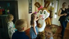 (tsundet) Tags: birthday rabbit bunny costume birthdayparty mascot easterbunny mascotte maskot