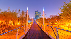 Over the bridge (MAKE IT LOOKING COOL) Tags: above city bridge blue abstract blur building tree art beach beautiful architecture night forest wonderful painting poster landscape photography nikon alone quiet angle bright pastel wide peaceful korea seoul balance nightsky citylight seoulforest