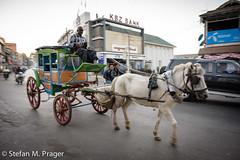 717-Mya-PYINOOLWIN-086.jpg (stefan m. prager) Tags: burma transport myanmar verkehr birma pferd pyinoolwin nikond810 pyinoulwin
