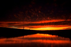 Fire in the Sky (Paul Hollins) Tags: australia newsouthwales aus woodville
