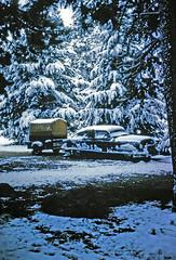 Grand Teton NP, Jenny Lake (empty) Campground under September Snow, 1957 (Anaguma) Tags: snow nikon september wyoming grandtetonnationalpark nipponkogaku jennylakecampground photocopiedslide