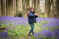 Bluebell walk (Tubs McHam) Tags: nature canon ella bluebell canon6d matthewpaullewis tubsmcham