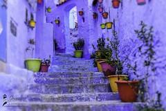 Medina Chefchaouen Morocco-1fb (Jeremie Doucette) Tags: morocco medina chefchaouen rifmountains