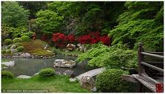 (Damien Douxchamps) Tags: japan garden temple japanesegarden kyoto    kansai japon shorenin   kinki higashiyama         shourenin