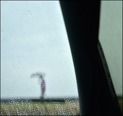 F_DSC3374-1-Nikon 800E-Nikkor 28-300mm-May Lee  (May-margy) Tags: portrait blur car rain umbrella drops bokeh taiwan windshield  raining         repofchina  newtaipeicity maymargy nikkor28300mm nikon800e maylee  mylensandmyimagination  naturalcoincidencethrumylens  linesformandlightandshadows  fdsc33741